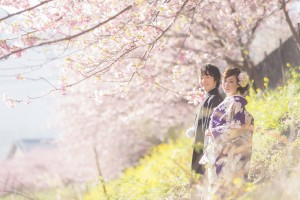河津桜 (9 - 20)